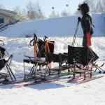 Зимний фетиваль спорта. Март 2015 год (24)