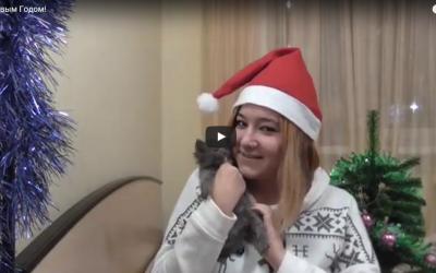 Новогоднее поздравление от Леськи Чу