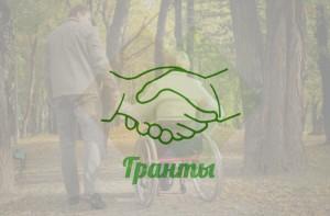 проекты в сфере социальной поддержки