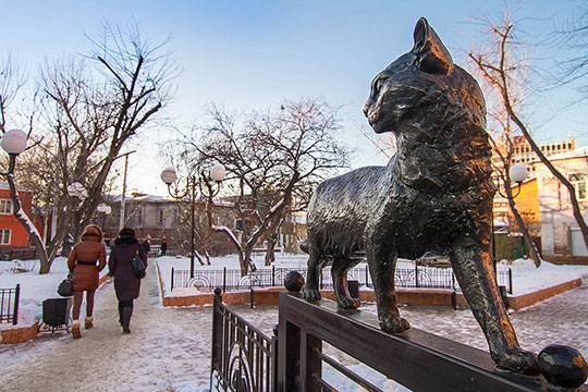 Третье место Елена Григорьева, г.Иркутск («Кот, прогуливающийся по забору»)