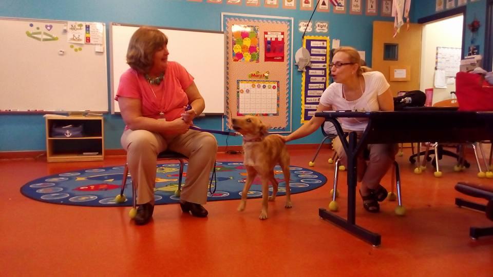 """Методы реабилитации разные. В том числе и канистерапия. В """"штате"""" школы 2 собаки. — в UCP of Central Florida. Нравится Нравится Супер Ха-ха Ух ты! Сочувствую Возмутительно КомментарийПоделиться 1Katrin Yudina Комментарии"""