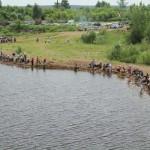 XII Республиканский рыболовный фестиваль иинвалидов (1)